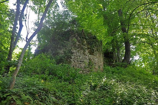 Mehovski hrib_ostanki gradu