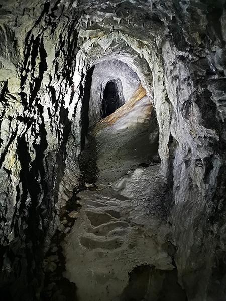Kraški pojavi v Polhovi jami
