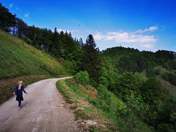 Pot potek delno tudi po cesti, Mrzlica v ozadju