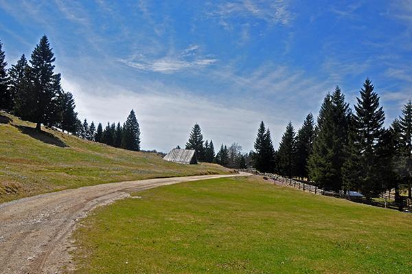 Cesta na Menini planini