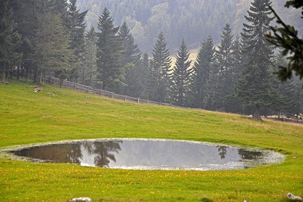 Jezerca na Menini planini