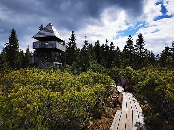 Razgledni stolp ob Lovrenških jezerih