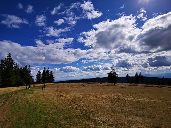 Ob poti na Lovrenška jezera