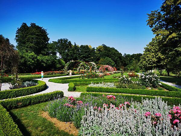 Botanični vrt Univerze v Mariboru