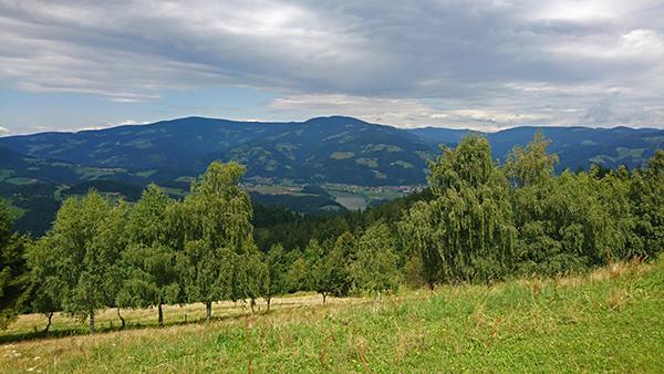 Razgled iz Šentjanža nad Dravčami