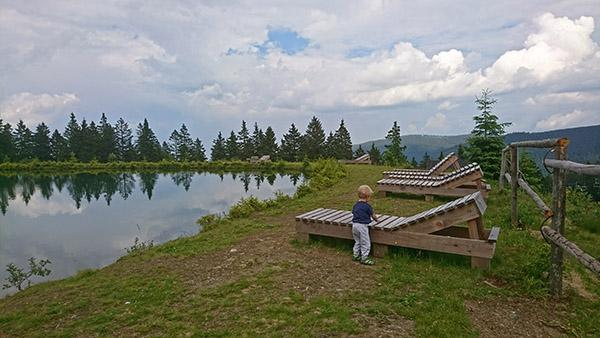 Petelinje jezero