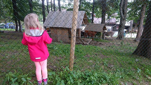 Holcerčkov živalski vrt