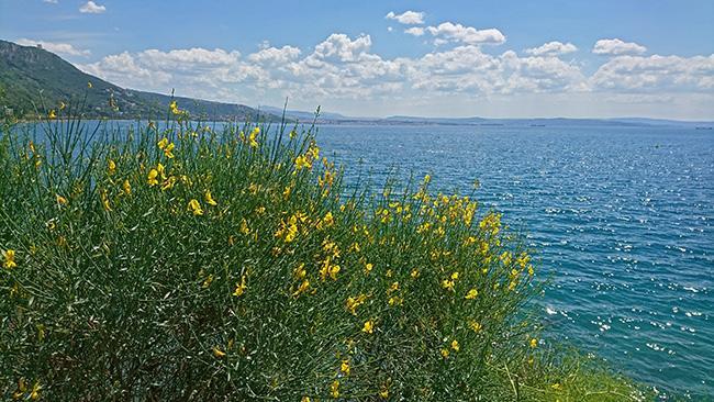 Razgled na morje od Miramar