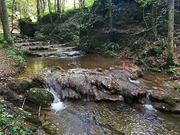 Divji potok