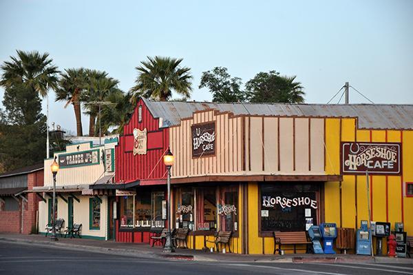 Western vasica, Arizona