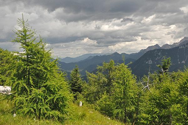 Razgled z Kozjega vrha