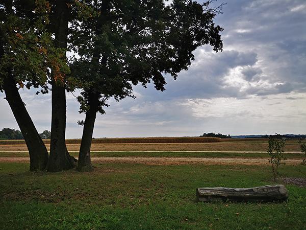 Polje ob parku