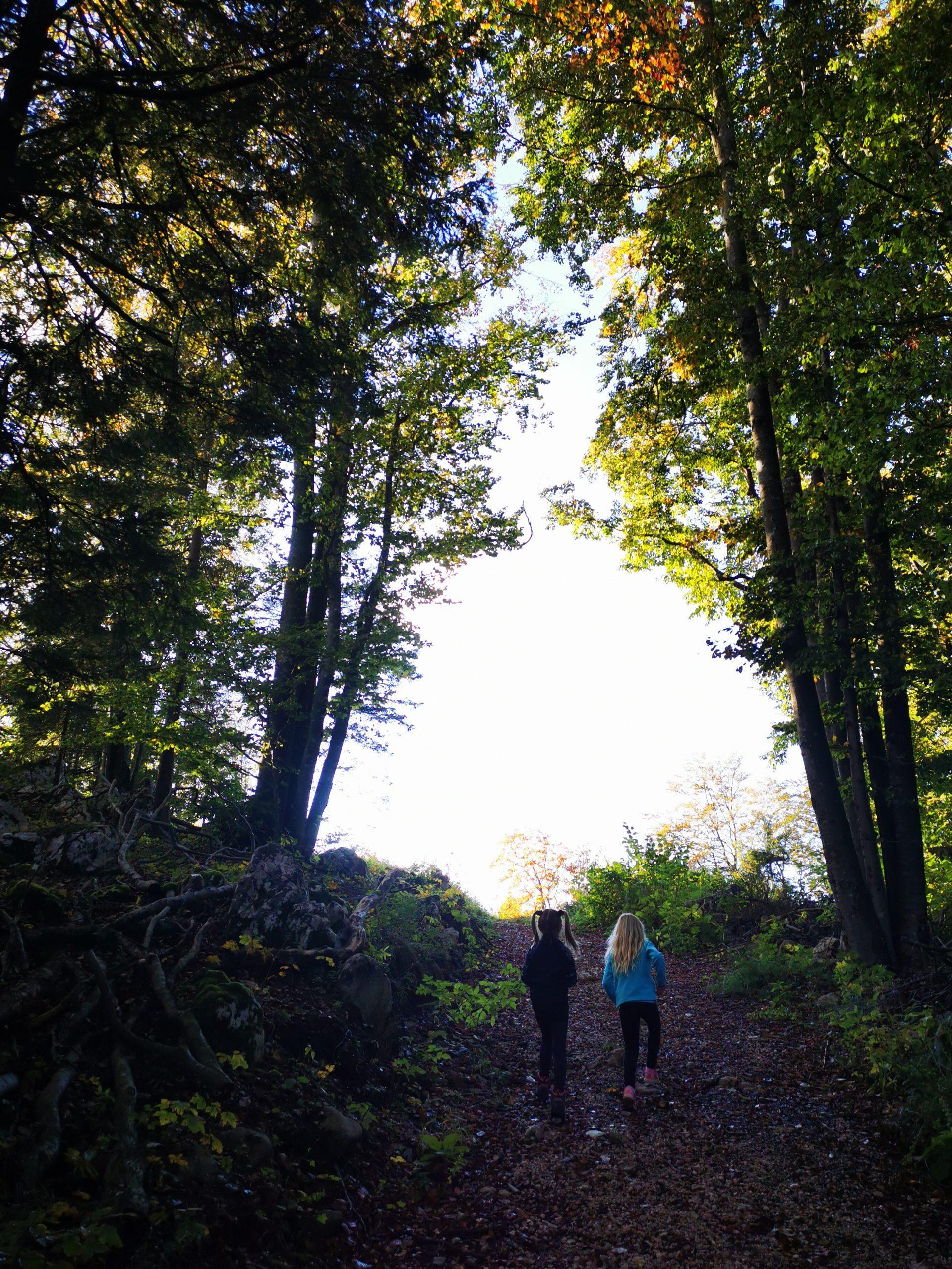 Pohodna pot na Špik na Paškem Kozjaku