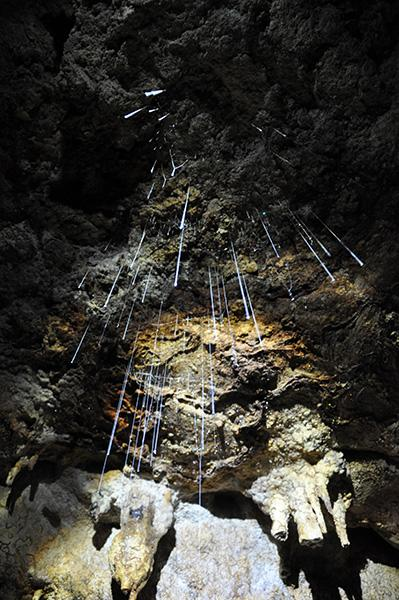 Svetleči črvi v jami, Nova Zelandija