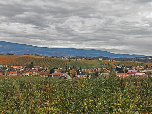 Pogled na Slovenske Konjice