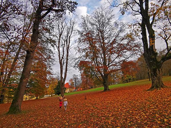Park pred dvorcem Trebnik