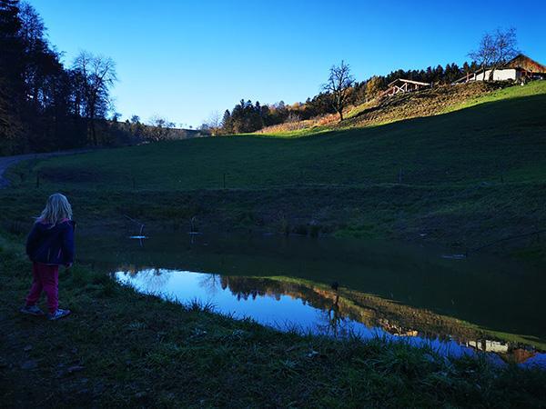 Manjši ribnik pred razpotjem kmetij Rebernak in Leskovar