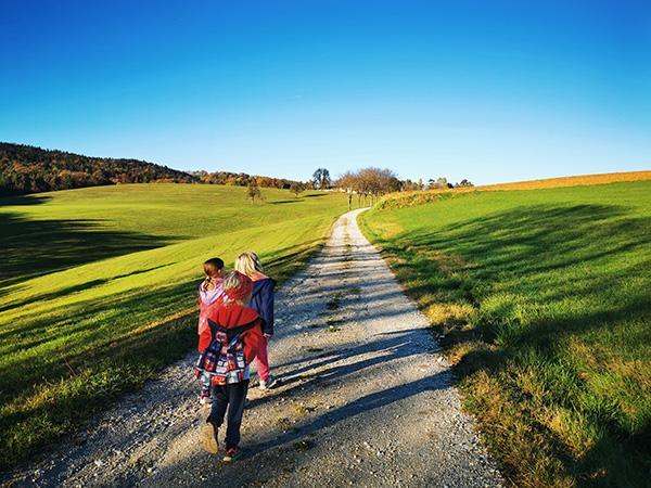 Cesta proti kmetiji Rebernak