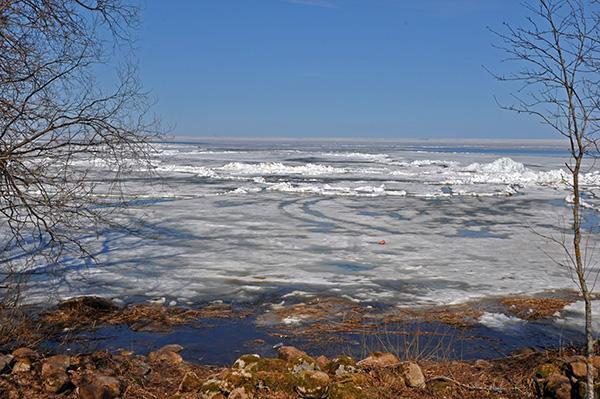 Jezero Peipsi