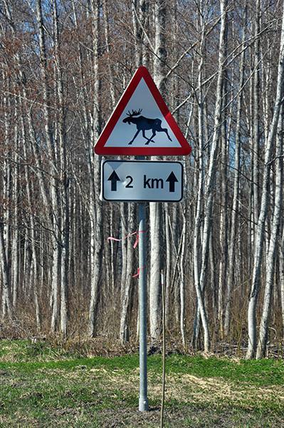 Pogosti prometni znak ob cesti