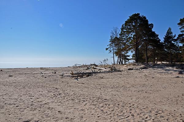 Peščene plaže, Latvija