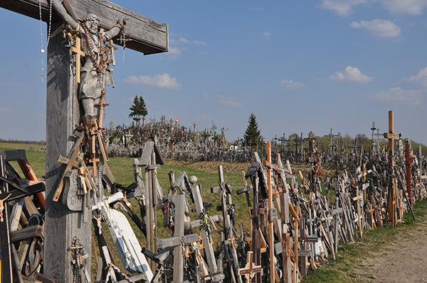 Hrib križev, Litva