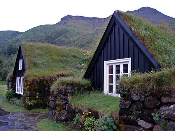 Hiške iz travne ruše
