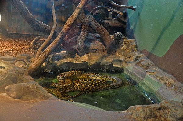 Živalski vrt Zagreb