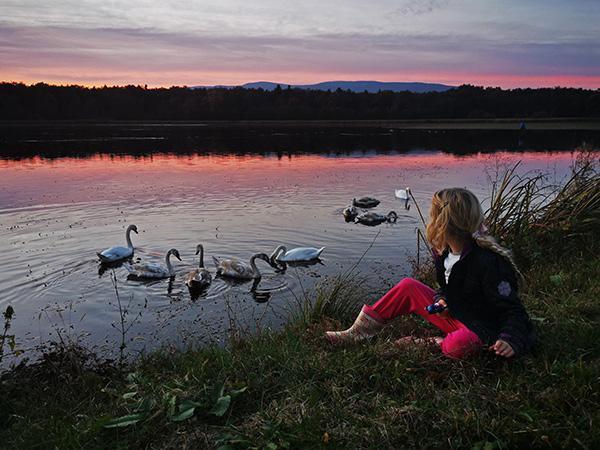 Krajinski park Rački ribniki – Požeg