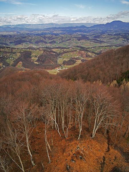 Razgled z vrha stolpa