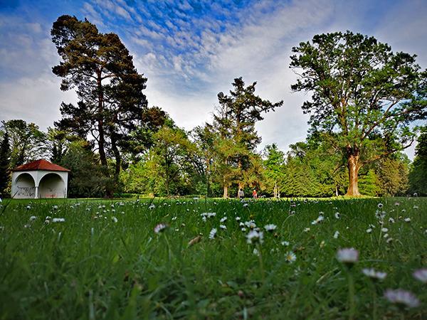Grajski park Slovenska Bistrica