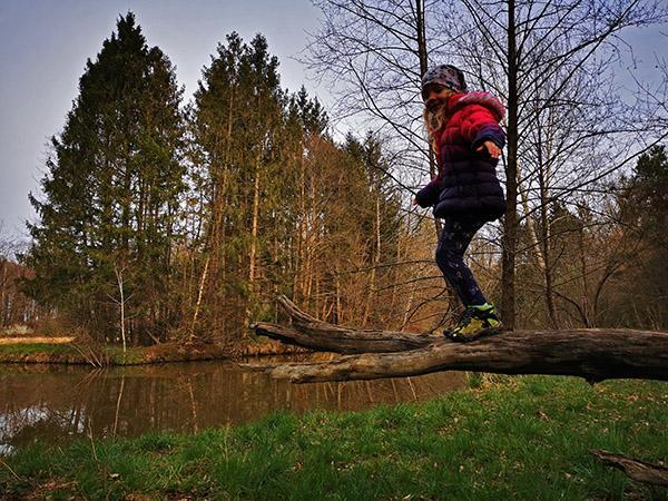 Gozdni rezervat Cigonca