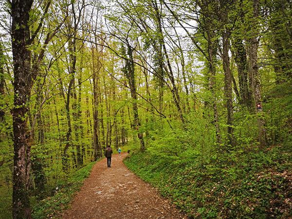 Pot do Tabora nad Cerovim