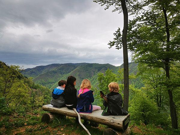 Gozdna učna pot Ruta