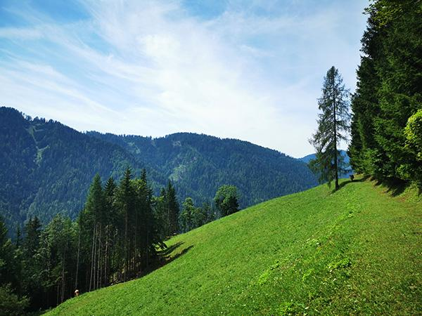 Travnik med potjo na Ostrčnjak