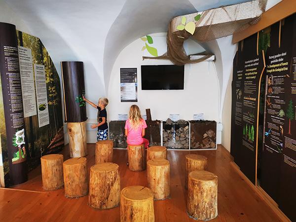 Muzej gozdarstva in lesarstva