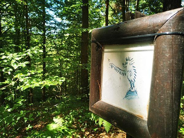 Gozdna učna pot Tromejnik